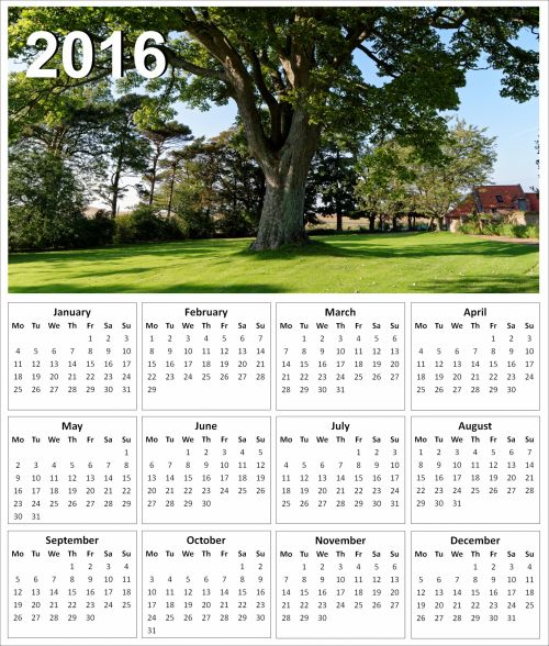 2016 Tree Calendar