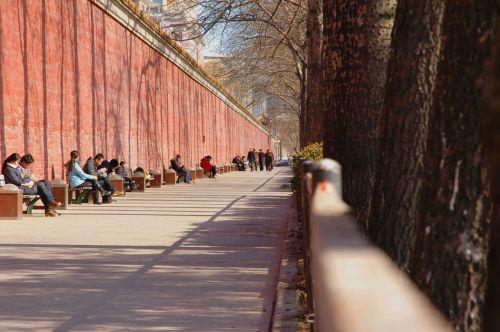 Forbidden City Wall