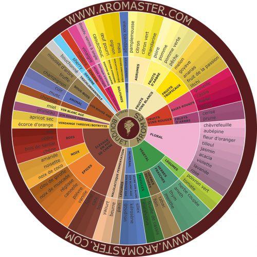 French Wine Aroma Wheel