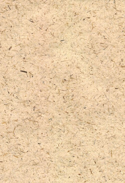 Oatmeal Texture Background