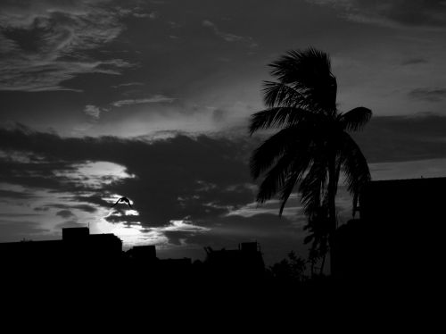 Monsoon Arrived