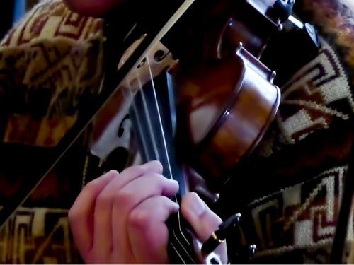 2nd Violin Musician