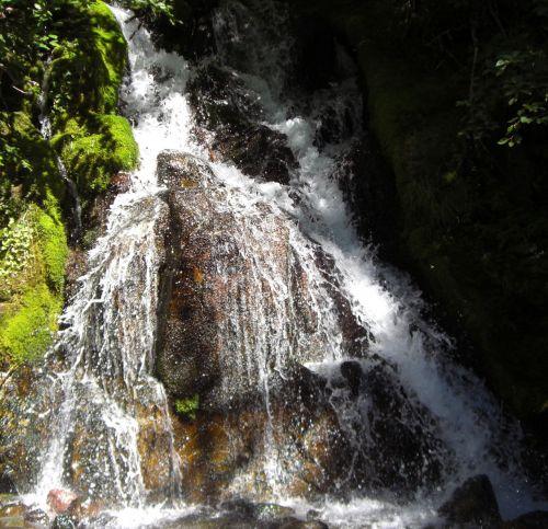 Waterfall At Rainer