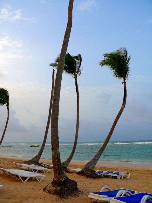 beach,sun,holiday,dominicanrepublic,uveroalto,puntacana,sirenissuites,sea,exoticcountry,hot,summer,beach uvero alto