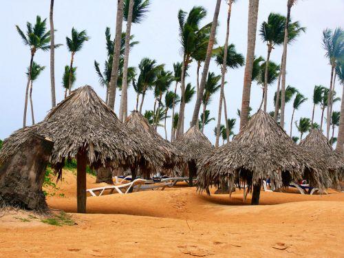 beach,sun,holiday,dominicanrepublic,uveroalto,puntacana,sirenissuites,sea,exoticcountry,hot,summer,beach
