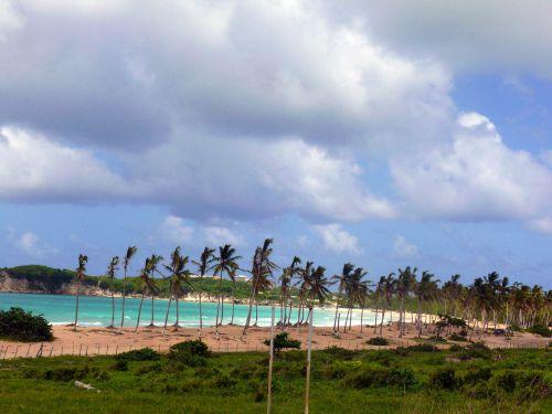 beach,sun,holiday,dominicanrepublic,uveroalto,puntacana,sirenissuites,sea,exoticcountry,hot,summer,relax,beach