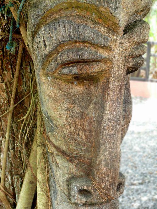 veidas, mediena, medis, Dominikonas & nbsp, respublika, egzotiškas, Šalis, šventė, vasara, menas, veidas