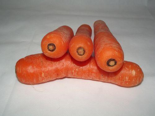 4 Fresh Carrots