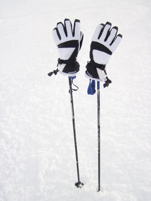 Ski Poles With Gloves