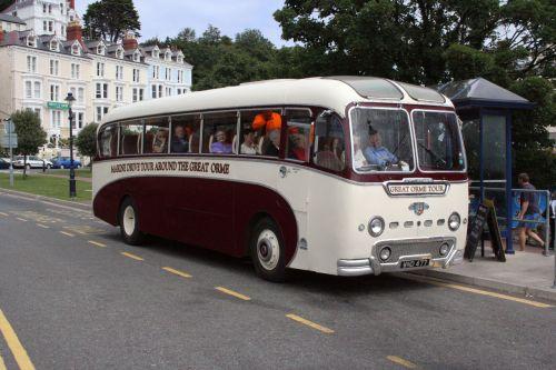 Historical Bus