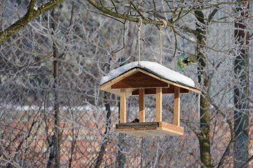 a bird feeder for the birds  the feeder  booth