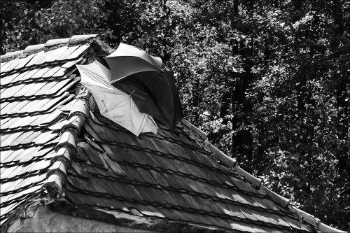 a leaky roof fix umbrella