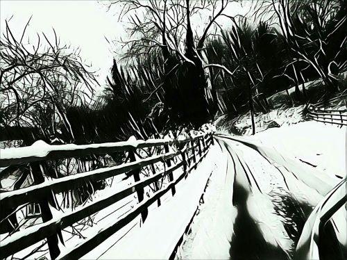 A Very Snowy Winterland