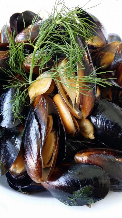 abalone myuzle seafood