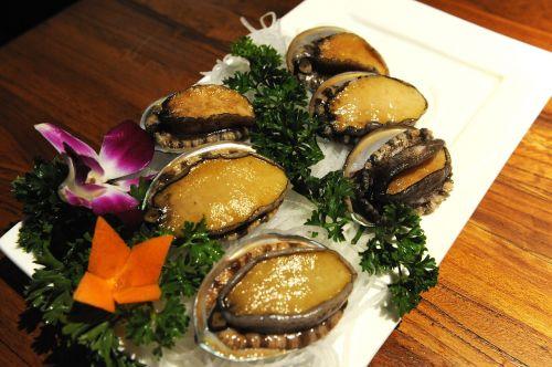abalone abalone 2 abalone 3