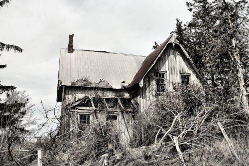 abandoned house farm