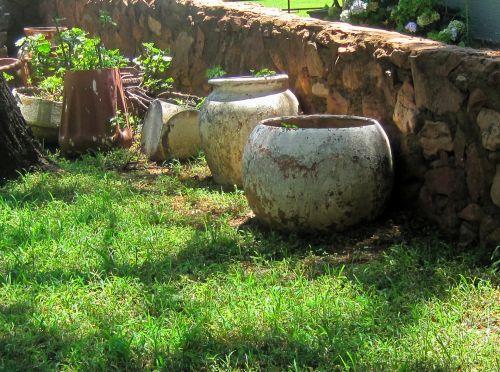 sodas, žolė, veja, žalias, puodai, augalas, pamiršta, paliktas, apleisti sodo puodai