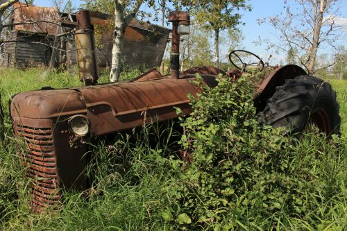 paliktas, traktorius, ūkis, rūdys, apleistas traktoriaus rūdys