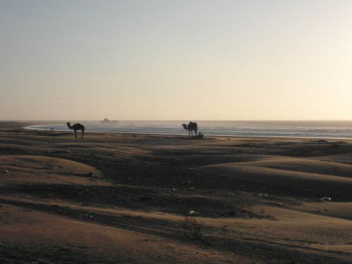 abendstimmung desert beach