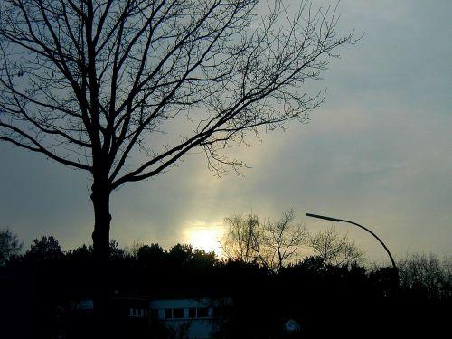 abendstimmung,saulėlydis,žiemą