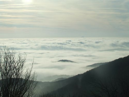 above the clouds three stone beech hg