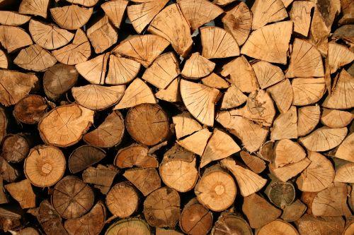 abstract bark cut