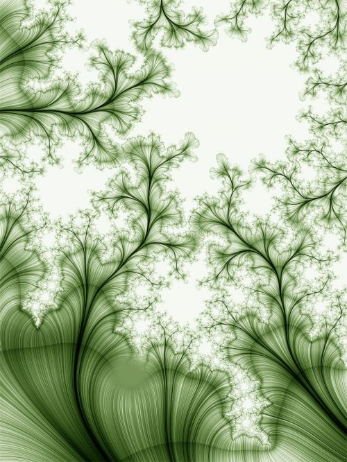 abstract fractal line