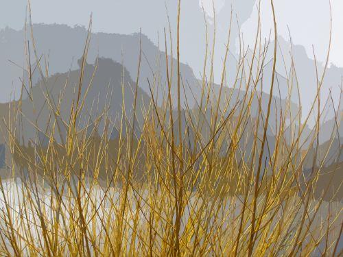 Abstract Mountain Treetops