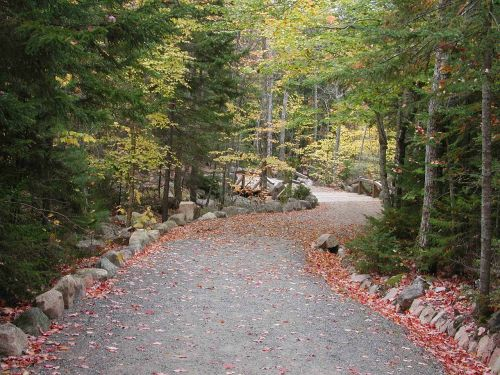 acadia national park maine path