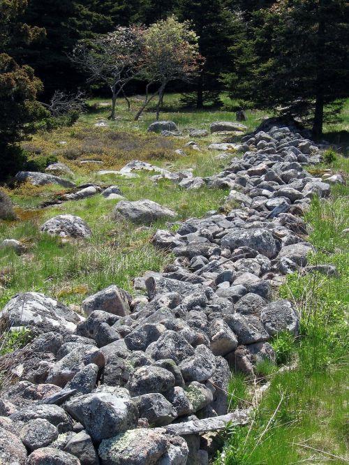acadia national park maine landscape