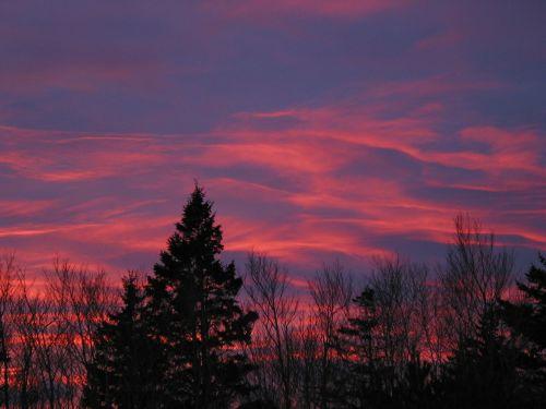acadia national park maine sunset