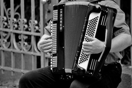accordion musical instrument handzuginstrument