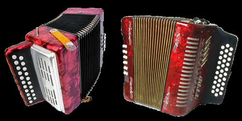 accordion fur music