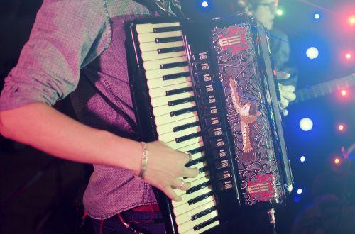 accordion harmonica acordeon