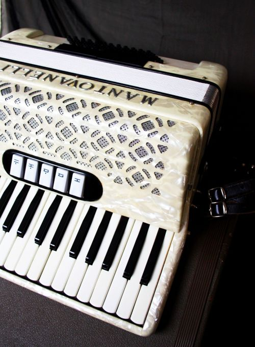 accordion squish music