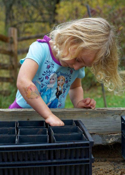 acorn planting child acorn