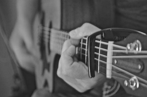 acoustic guitar guitar instruments