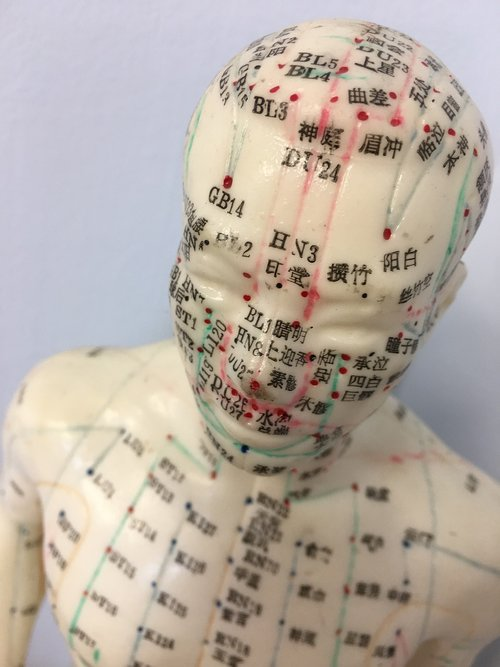 Free Photos Acupuncture Search Download Needpix Com