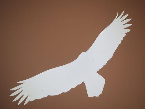 adler bird silhouette
