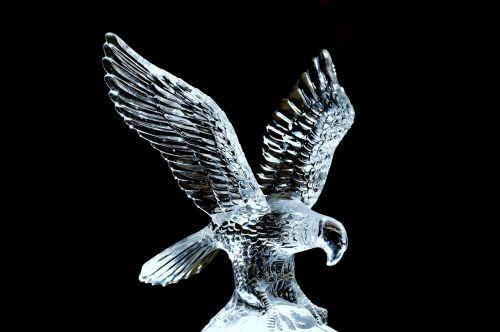 adler,stiklas,skulptūra,trapi,skaidrus,kilnus,figūra,paukštis,raptoras