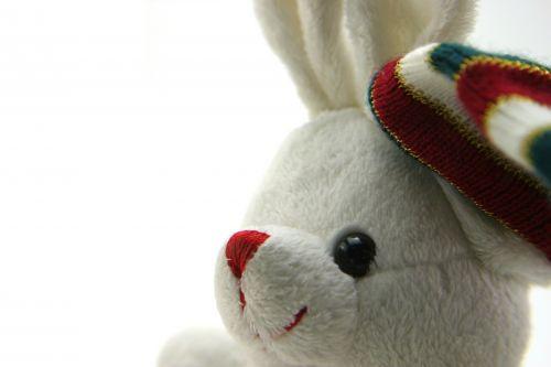 Adorable Generic Stuffed Bunny