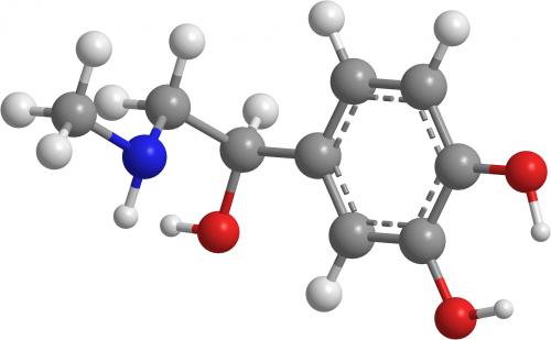 adrenaline organic chemistry molecules