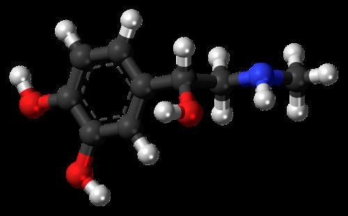 adrenaline epinephrine hormone