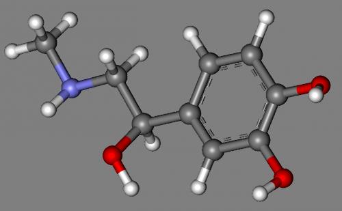adrenaline epinephrine molecule