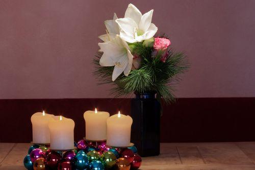advent wreath amaryllis white