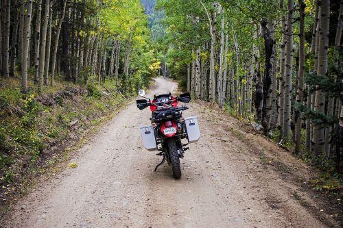 nuotykis,aspen,aspenos medžiai,purvo nuoma,purvo kelias,kritimas,kritimo lapija,motociklas,medžiai,miškai