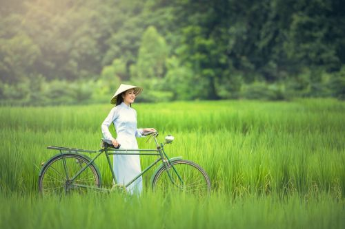 bicycle woman green