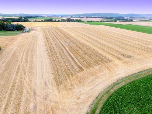 aerial view field hay bales