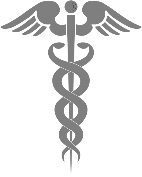 Free Photos Medicine Rod Of Asclepius On Badge Search Download