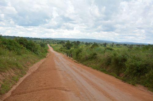 africa tanzania safari